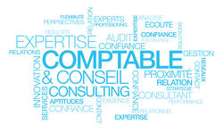 Expertise Comptable conseil consulting nuagede mot